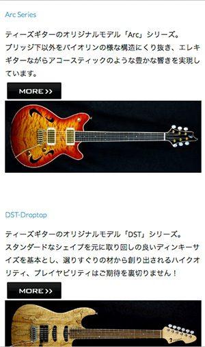Tsギター様